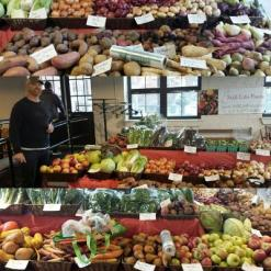 Curt at the Still Life Farm stall at Canal District