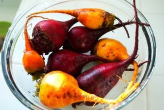 Beets - Red Round, Golden, Forono