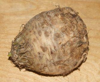 Celeriac or Celery Root